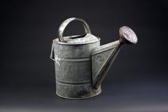 1 antique может садовничать Стоковая Фотография RF