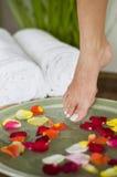 1 aromatherapy fot som kopplar av brunnsorten Royaltyfri Foto
