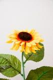 1 artificiel jaune Image libre de droits