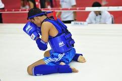 1. asiatische Kampfkunstspiele 2009 Lizenzfreies Stockfoto