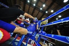 1. asiatische Kampfkunstspiele 2009 Lizenzfreies Stockbild