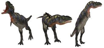 1 aucasaurus 库存照片