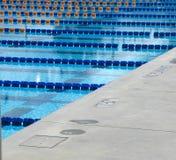 1 basenu zdjęcie royalty free
