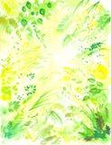 1 blom- bakgrund Royaltyfri Fotografi