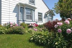 1 blommaträdgård Royaltyfri Foto