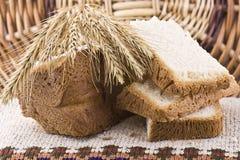 1 bröd Arkivbilder