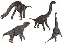 1 brachiosaurus 库存图片