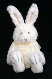 1 bunny Πάσχα στοκ φωτογραφία με δικαίωμα ελεύθερης χρήσης