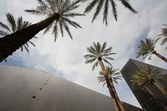 1 byggnader vegas Arkivfoto