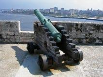 1 cannon Obrazy Stock