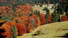 1 carpathian scenary Arkivfoto