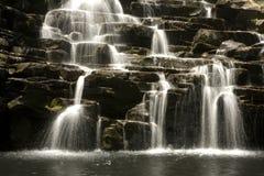1 cascade à écriture ligne par ligne de pluie de forêt Images libres de droits
