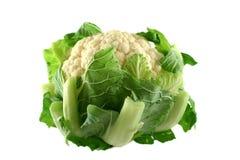1 cauliflower свежий Стоковые Изображения RF