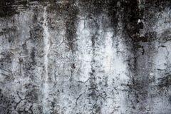 1 cementtextur Royaltyfri Foto