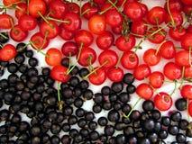1 Cherry Arkivbild