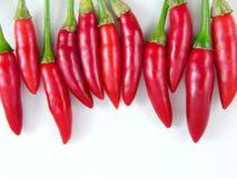1 chili nytt varmt valt rött s Arkivfoton