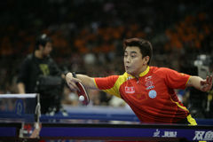 1 chn郝・ Wang 图库摄影