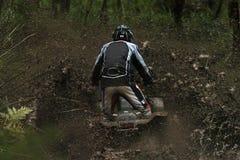 1 cody mud Arkivbild