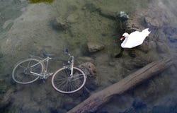 1 cykel inga rittthanks Royaltyfria Foton