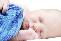 1 day old baby Stock Images