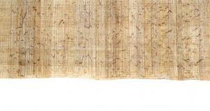1 egyptiska papyrus Arkivfoto