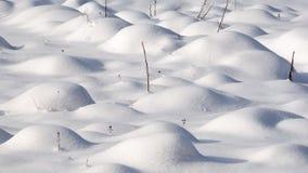 1 fält ingen vinter Royaltyfri Fotografi
