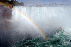 1 falls niagara Arkivfoton