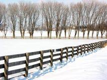 1 farmy płotowi drzewa Fotografia Royalty Free