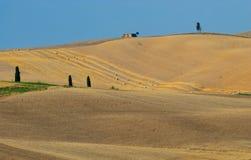 1 fields ingen tuscany Royaltyfria Bilder
