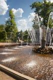1 fontanny peterhof Obraz Royalty Free