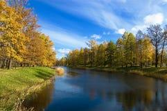 1 foresta di autunno Fotografia Stock Libera da Diritti