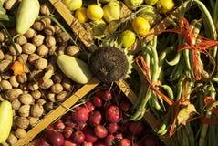 1 fruktskörd Arkivbilder