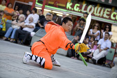 1 fu kung shaolin 免版税库存照片