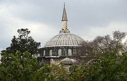 1 gammala moské Arkivfoto