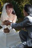 1 groom невесты вручая листья к Стоковые Изображения RF