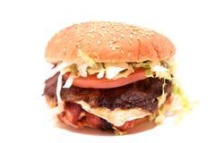 1 hamburgare Fotografering för Bildbyråer