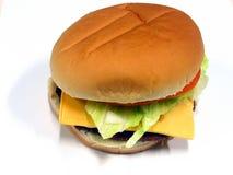1 hamburgare royaltyfri fotografi