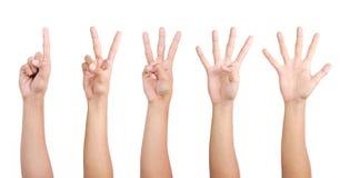 1 Hand 2 3 4 5 Lizenzfreie Stockbilder