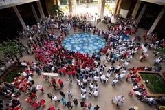 1 hawaii en samlar solidaritet Royaltyfri Bild
