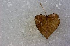 1 hearted froid Photo libre de droits
