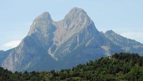 1 inga pyrenees Arkivbilder