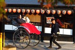 (1) jesień złoty Kyoto Obraz Royalty Free