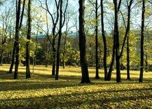 1 jesienią miasta obraz stock