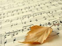 1 jesienna melodia Fotografia Royalty Free