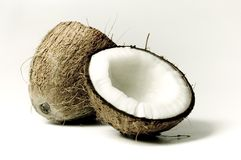 1 kokosnöt Royaltyfri Fotografi