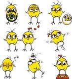 (1) kurczaki śmieszni Zdjęcie Royalty Free