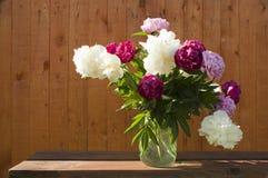 (1) kwiaty fotografia stock