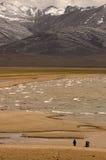 1 lakenamtso tibet Royaltyfri Fotografi
