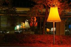 (1) lampy Obraz Royalty Free