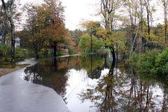 1 land översvämmade körbana Arkivfoton